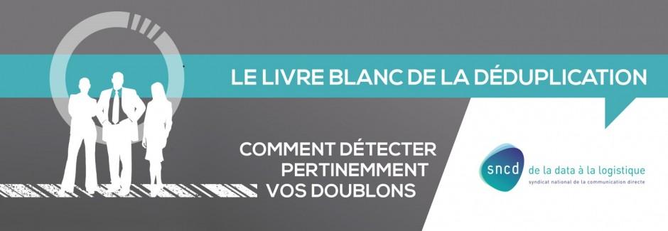 slide-livre-blanc 1500